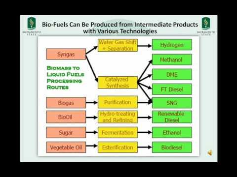 Biodiesel business plan presentation