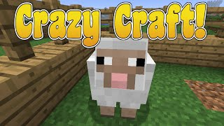 Sunday Morning Adventures! Crazy Craft! Ep.18 Andy The Sheep! | Amy Lee33