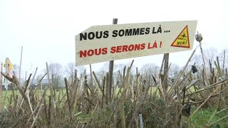 Notre-Dame-des-Landes: comment les zadistes s'organisent face à l'évacuation de la ZAD