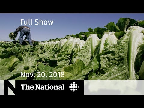 CBC News: The National: The National for Tuesday, November 20, 2018 — Romaine Warning, St. Michael's Assault, Oland Mistrial