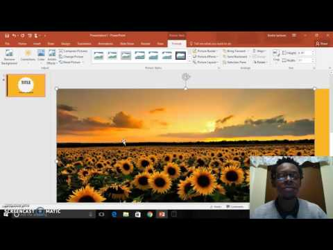 Powerpoint 16': Text/Image Animation & Animation Order