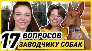 ИНТЕРВЬЮ С ЗАВОДЧИКОМ СОБАК Марией Оболенской | Разведение собак - бизнес или наука?