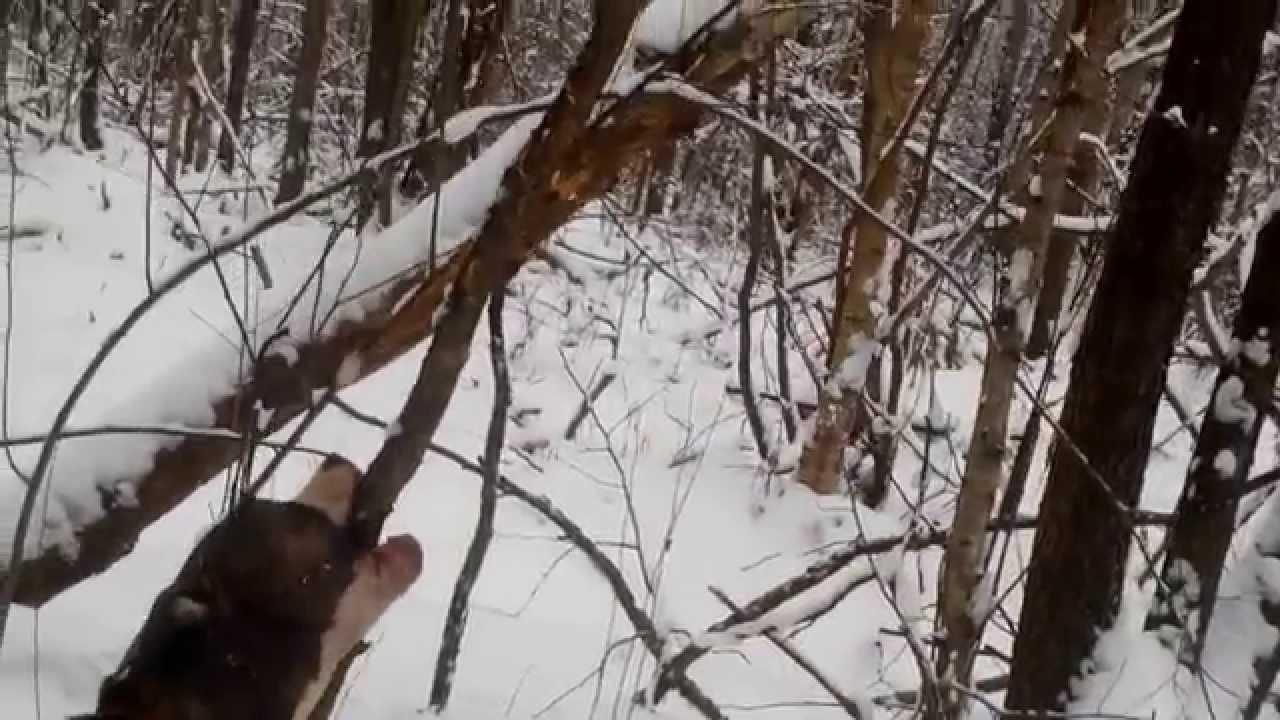 s-tetkoy-v-lesu-samaya-krasivaya-devushka-trahaetsya-video-onlayn