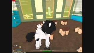 my little pony rim roblox custom ponies part 1