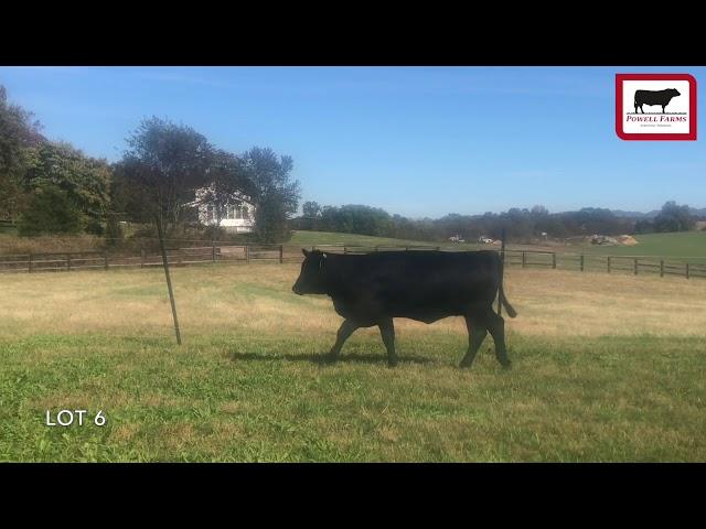 Powell Farms Lot 6