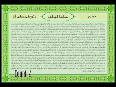 Wazifa - 41 Yaseen (Solve All Your Problems Insha'Allah)