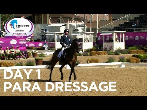 Gold for Team GBR, Netherlands and Austria  Para Dressage  Longines FEI European Championships 17