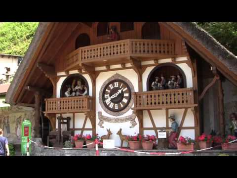 The Black Forest  - Travel The World With Your Kids
