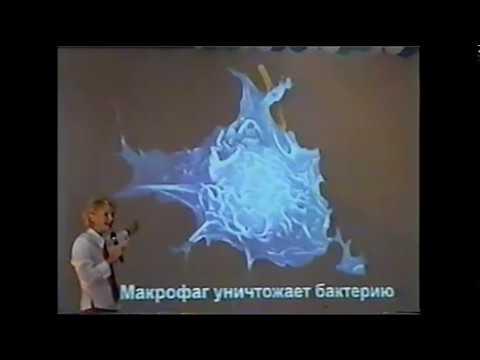 Какие могут выходить паразиты у человека с калом