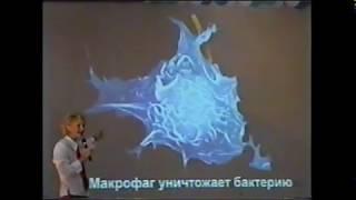 * Войны вирусов. О.А.Бутакова АКАДЕМИЯ ЗДОРОВЬЯ