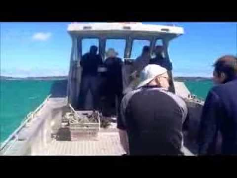 Coffin Bay Oysters Lease Tour South Australia