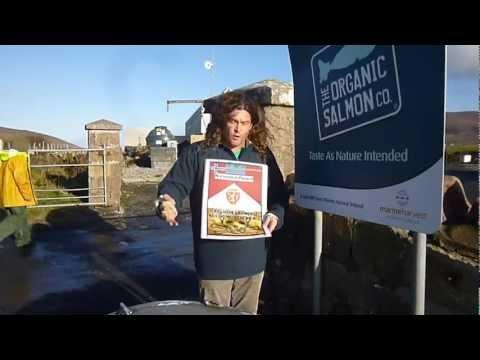 "Marine Harvest Ireland's ""Organic"" Scamon"