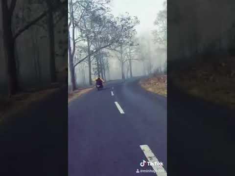New Traveling WhatsApp Status Video Malayalam Guppy Song