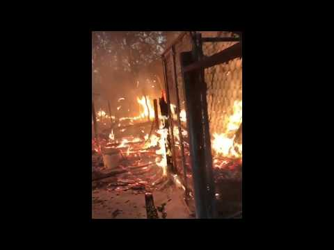 Wildfires Destroy Dog Kennels at Glen Ellen, California, Business
