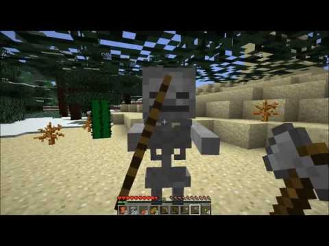 Cayen Plays Minecraft: My brother's wedding