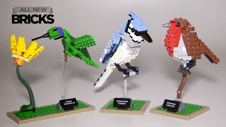 Lego Ideas 21301 Birds Speed Build Review