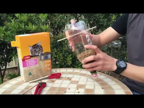 Cat Feeder - DIY Self feeding cat food dispenser