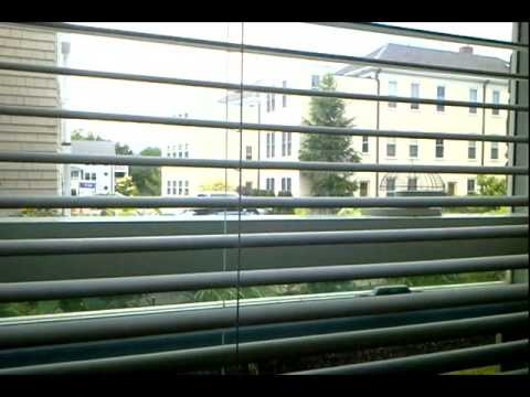 Stylish Venetian Window Blinds: Privacy, Light
