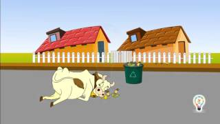 Waste disposal management,how to recycle waste things at home