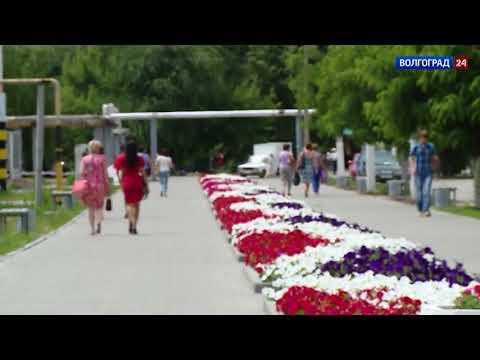 Новоаннинский сельскохозяйственный колледж #живулюблюгоржусь