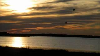 Hypnopomp - Swallow's Dive
