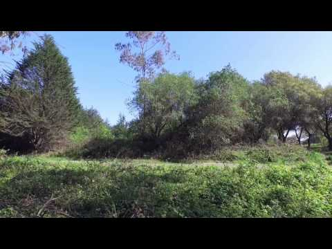 DJI Quadcopter flyover San Bruno Mt California
