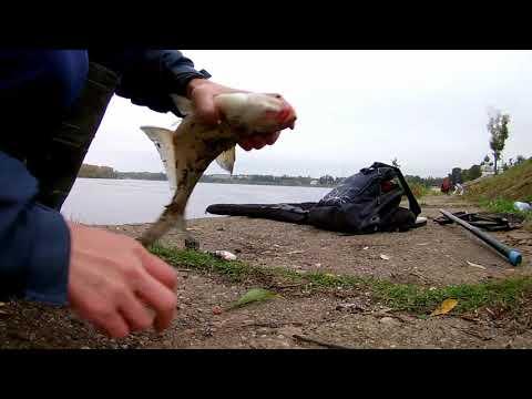 Рыбалка в Угличе ...