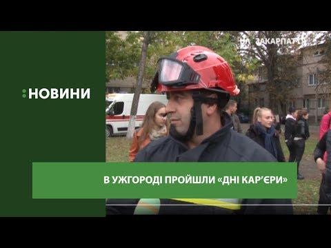 """""""День кар'єри"""" для учнів 9-10 класів відбувся в Ужгороді"""
