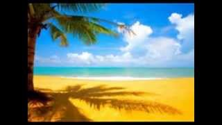 "Jeffrey Foskett-""I Live For The Sun"""