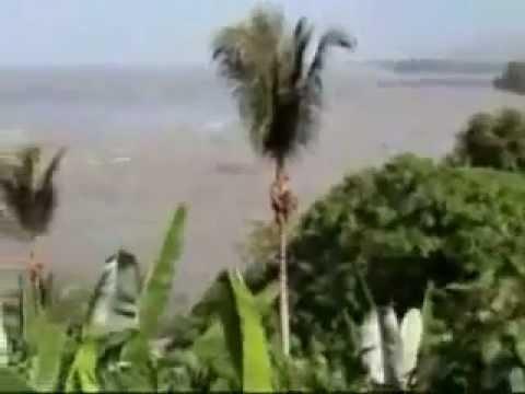 Indonesia  2012 Tsunami