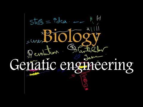 Biology | Genatic engineering