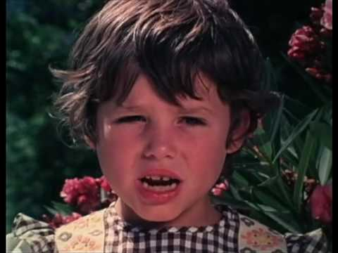 El Quinto Jinete -- Mister George