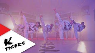 K-TIGERS ZERO x BTS _ SIDE KICK × IDOL Mashup