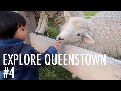 Living in a Campervan: New Zealand #4