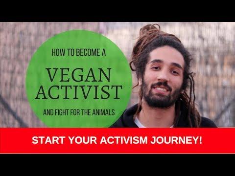 HOW TO BE A VEGAN ACTIVIST