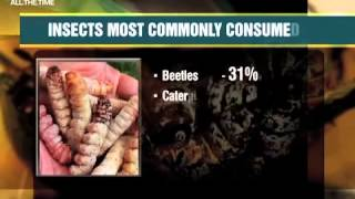 Insect Delicacy? FAO Urges Eating Of Insects