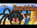 Brandon's Cult Movie Reviews: Tarantula