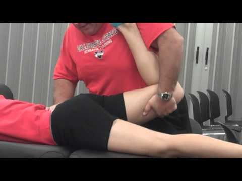 femoral nerve tension test - physiopedia, Muscles