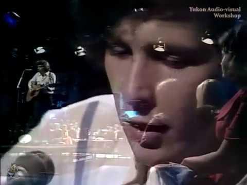 Don McLean - Vincent (Lyrics On Screen)