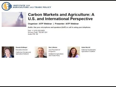 Carbon Markets and Agriculture: A U.S. and International Perspective