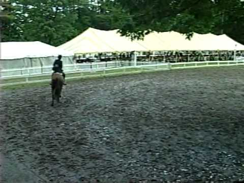 Saratoga Classic Childrens Hunter Horse