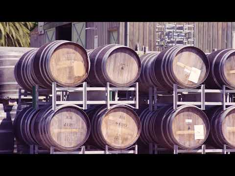 Ten Minutes by Tractor  |  Winemaking