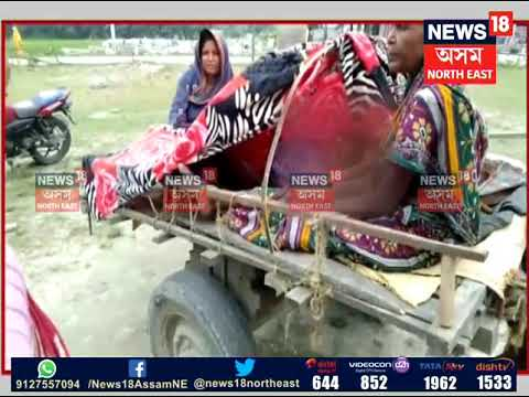 Woman Gives Birth In A Horse-cart While On The Way To The Hospital In Sontoli In South Kamrup