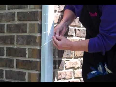 Vertical Gardening with Invisible Trellis Kit - Morning Glory, Clematis and Moonflower made easy