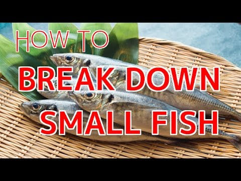 How To Break Down Small Fish 【Sushi Chef Eye View】