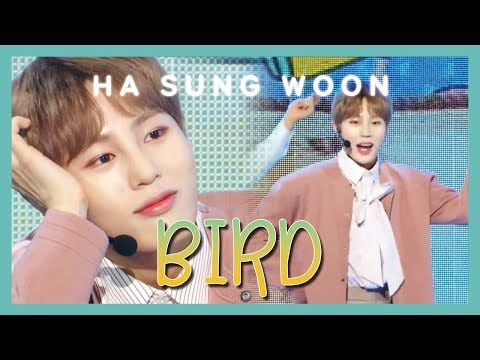 [HOT] HA SUNG WOON - BIRD , 하성운 - BIRD Show Music Core 20190309