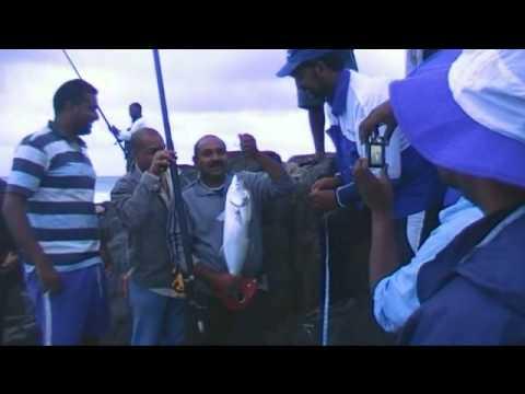 Legends of the tide doovi for Crazy fish port jeff