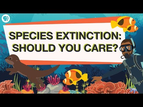 Endangered Species: Worth Saving from Extinction?