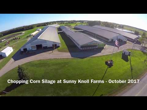 Chopping Corn Silage at Sunny Knoll Farms - October 2017