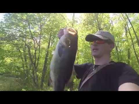 Fishing Little Dam Lake: Healy Outdoors